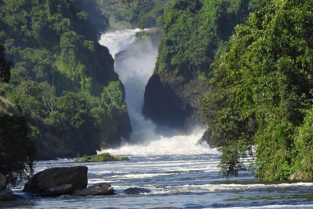 Murchison Falls - Gorillas, Chimpanzee & Wildlife Safari