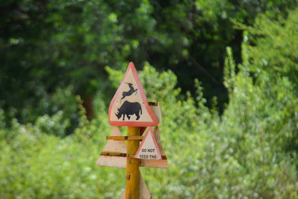 Ziwa Rhino Ranch